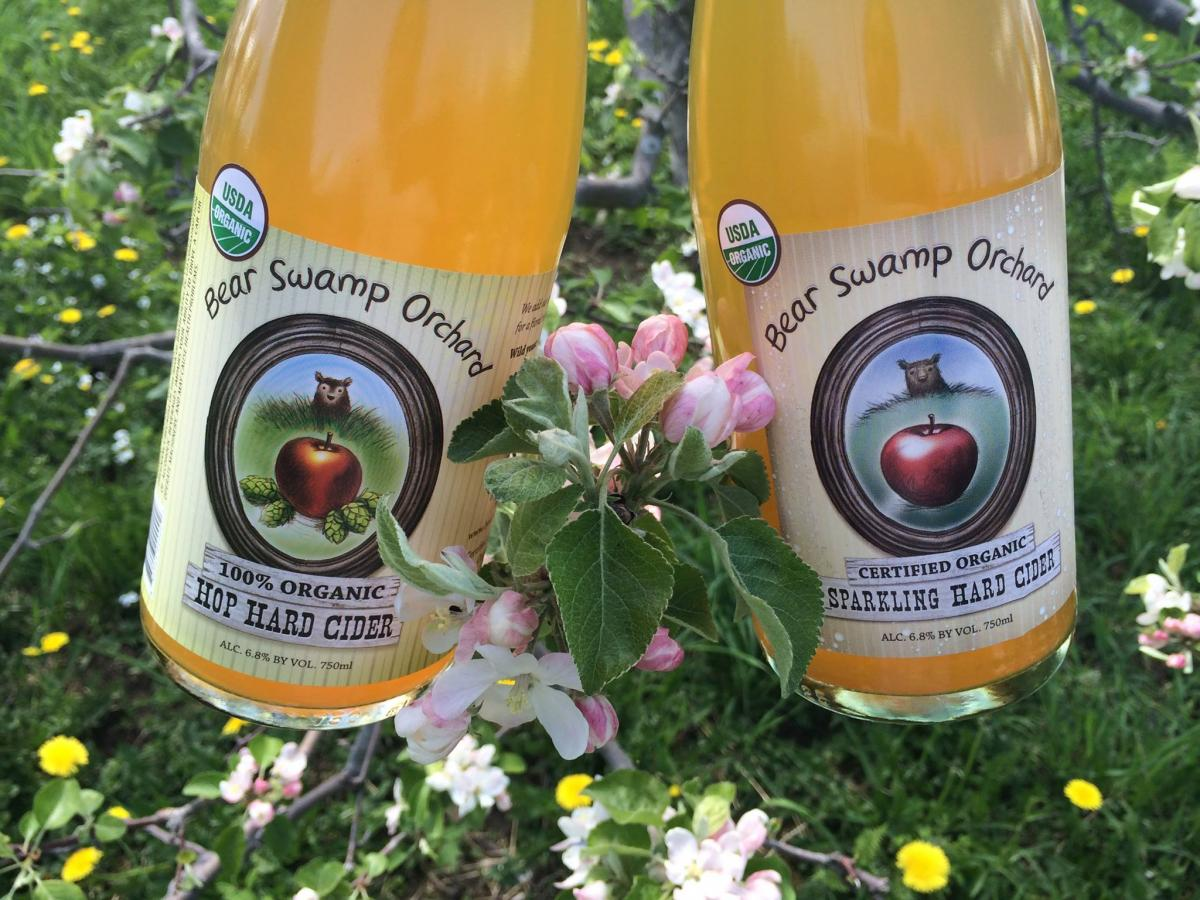 Where to get cider in Massachusetts