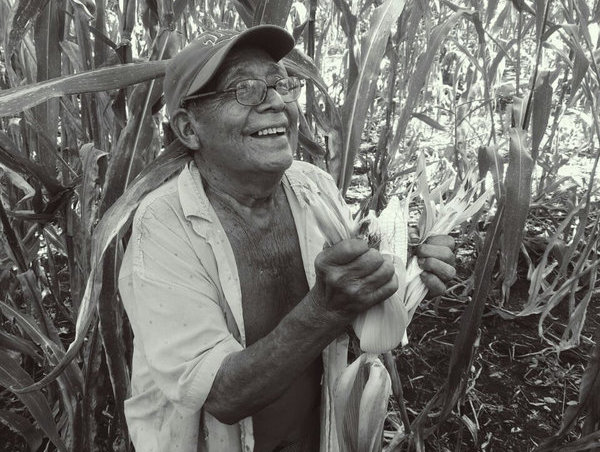 Dionisio Yam Moo beams while shucking corn that he harvested in October, 2016. (Photo: Sébastien Proust)