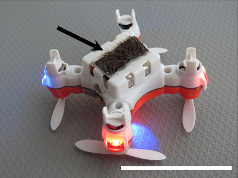 The insect-sized drones use horse hairs coated with ionic liquid gel to mimic the fuzzy exterior of bees and provide an electric charge to keep the grains attached.