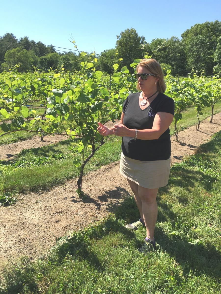 Who Needs Napa? The North Shore's Got a Winery Worth the Trip |WGBH | Craving Boston