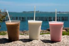 Your Weekend Shake Guide | WGBH | CRAVING BOSTON