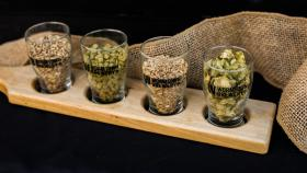 Check Out These Holiday Deals On WGBH's Craft Beer Fest Tickets