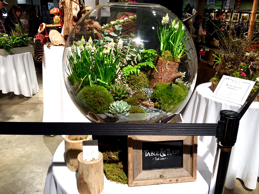 Stylish terrariums are gracing tables all over town, and companies like Plant Nite host events where you can make your own.  This beauty was the work of South End florist Table & Tulip. (Photo: Catherine Smart)
